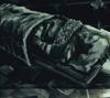 Qhorwyn Hoare death