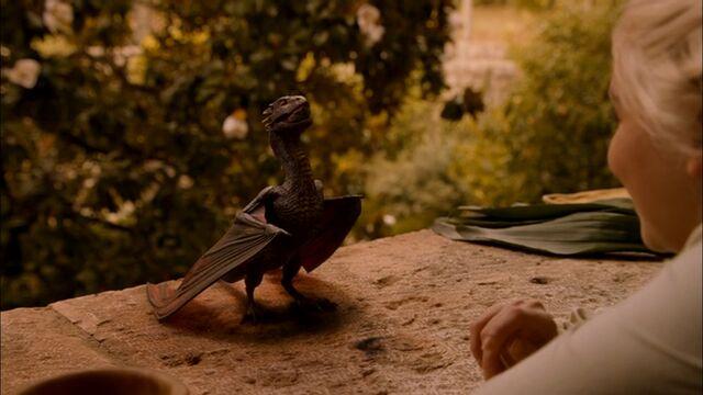 File:Drogon eats.jpg