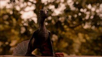 Drogon