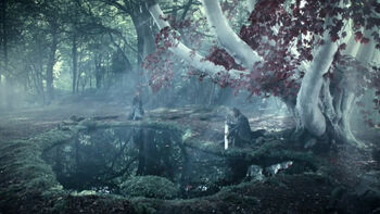 Old Gods of the Forest