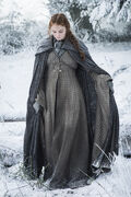 Sansa stark s6 in snow