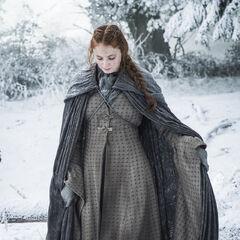 Sansa in Season 6.