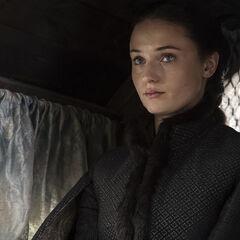 Sansa Stark as Alayne in Season 5