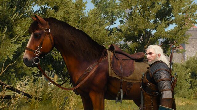File:The-witcher-3-wild-hunt-nvidia-hairworks-horse.jpg