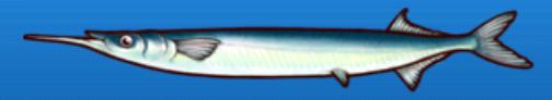 File:Needlefish.png
