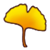 File:Yellow ginko leaf.png