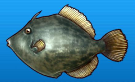 File:File fish.png