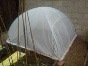 Brassica netting