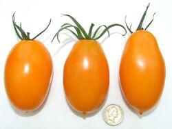 Tomato Orange banana