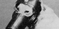 United States CD V-800 Gas Mask