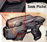Snub Pistol Caliber