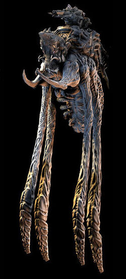 Hydra Model
