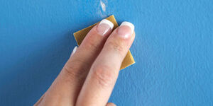LCI Web MistakeProofer2011 Sandpaper Wall Model web2
