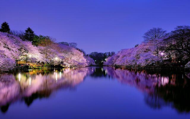 File:Osaka-(Japan).jpg