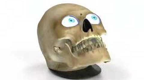 Animated Scary Skull-0