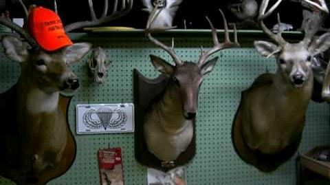 Buck Sings