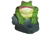 Singing rock frog