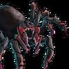 Troop Giant Spider