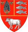 Actual Vaslui county CoA