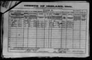 1901 census carr-bridget original
