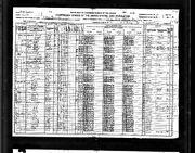 1920 census Jenkins