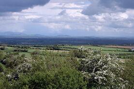 Ireland - Plains of South Kildare