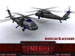 Americanblackhawk