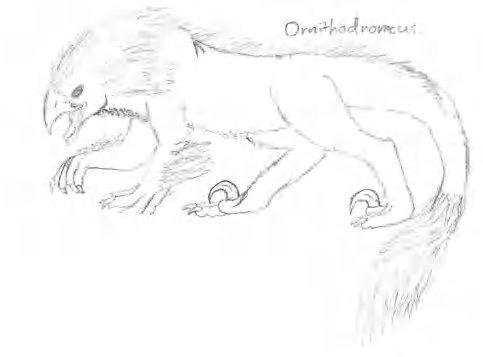 File:Ornitodromeus.jpg