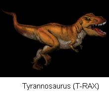 File:Tyrannosaurus rex tyrannosaurinii.PNG