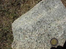 800px-Granodiorite fine-grained