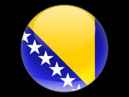 File:BOS Flag.png