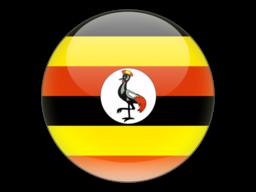 File:UGA Flag.png