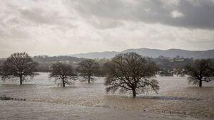 72928479 floodfield getty