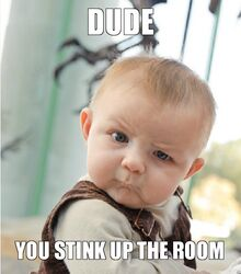 Dude-you-stink-up-the-room