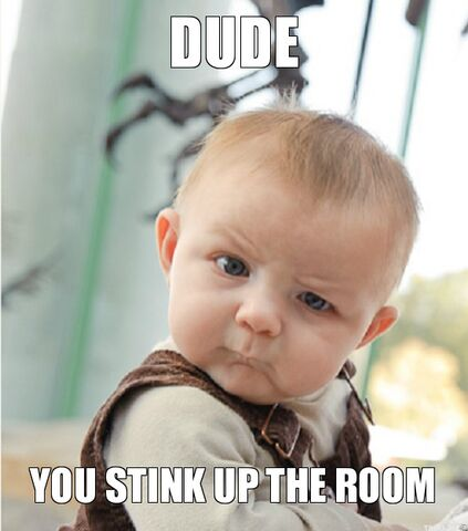 File:Dude-you-stink-up-the-room.jpg