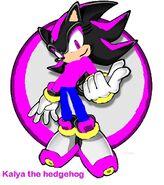 Kayla-sonic-characters-11282592-522-590