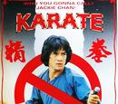 Karate Ghostbuster (拳精 Spiritual Kung Fu)