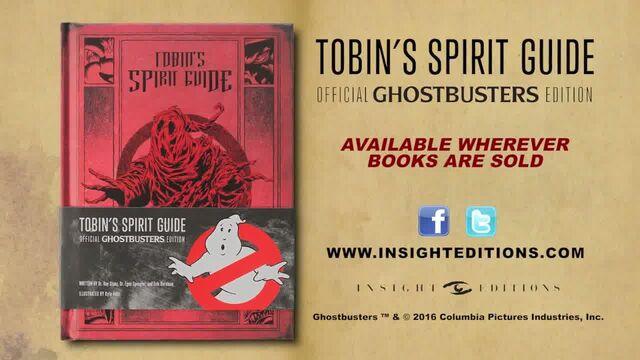 File:TobinsSpiritGuideInsightTrailer12.jpg