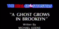 A Ghost Grows in Brooklyn