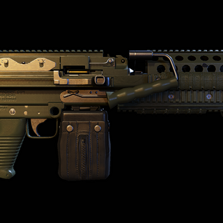 Stock MK-48 with factory new paint. (Wildlands)