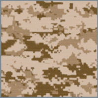 File:TAN Camo.png