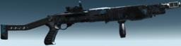 Spas-12-h c r6