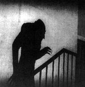 Shadow-following