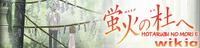 Hotarubi wiki banner
