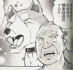 Fubuki owner
