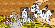 Riki, Jisoku, Suki, Hisan, Kichi