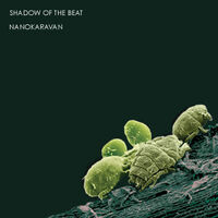 Shadow Of The Beat - Nanokaravan