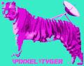 Pixxeltyger.jpg
