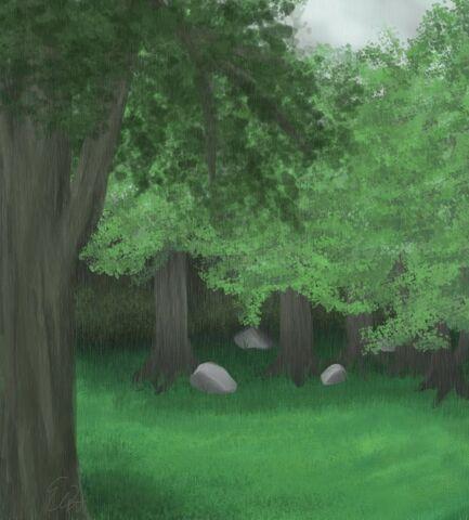 File:Forest clearing by Dark Alchimest.jpg