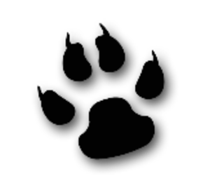 File:13412400511882259308cool-cat-animal-paw-md-1-.png